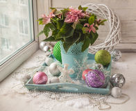 Winter window with Poinsettia  (Euphorbia pulcherrima) with pink Stock Photography