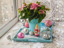 Winter window with Poinsettia  (Euphorbia pulcherrima)  and vint Stock Image