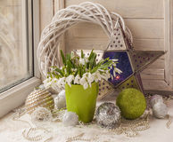 Winter window with snowdrop. Royalty Free Stock Images
