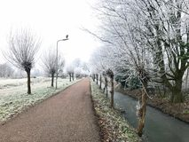 Winter. In Holland Royalty Free Stock Images