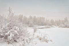 Winter. Non-freezing flow of the Yenisei River. December 2017 year. Khakassia. Siberia. Russia Stock Photo