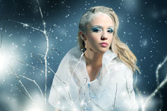 Winter woman with beautiful make-up Royalty Free Stock Photo