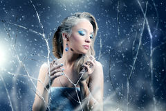 Winter woman with beautiful make-up. On light background Stock Photos