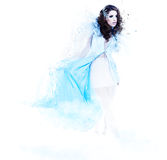 Winter woman in a dress of Snow Queen Stock Image