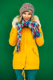 Winter Woman in knitting hat and scarf Fashion Stock Image