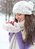 Winter woman with red berrys Royalty Free Stock Images