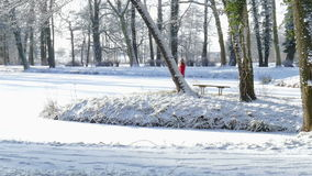 Winter. A woman walks through a park in winter stock footage