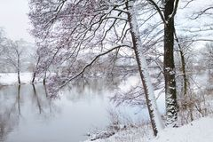 Winter Wonder Land II Royalty Free Stock Photo