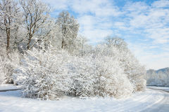 Winter wonder land - road under snow Royalty Free Stock Photography