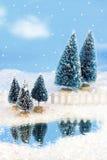 Winter wonderlan Stock Photos