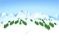 Winter wonderland. Christmastree merry night Royalty Free Stock Images
