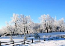 Winter Wonderland. A perfect winter day after a heavy snow in the country Stock Images