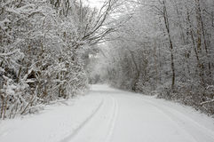 Winter wonderland. A country lane after a snow storm Stock Images