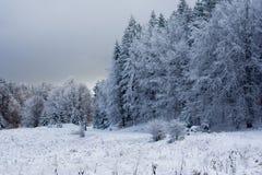 Winter wonderland. Stock Images