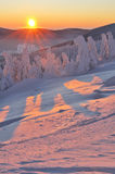 Winter Wonderland. During the colorful sunrise Stock Images