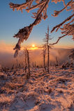 Winter Wonderland. View of winter wonderland during the sunset time royalty free stock photos