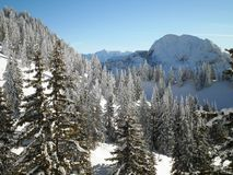 Winter Wonderland. A beautiful winter wonderland scenery in the bavarian alps stock image