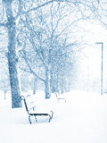 Winter Wonderland Royalty Free Stock Photos