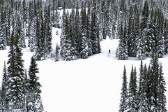 Winter wonderland. Two skiers alone in the slopes of whislter winter wonderland Stock Photos