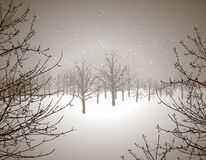Winter wonderland. Winter scene illustration Royalty Free Stock Photography