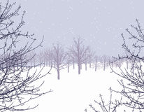 Winter wonderland. Winter scene illustration Royalty Free Stock Image