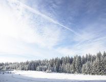 Winter wonderland amazing Royalty Free Stock Photography