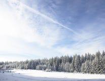 Winter wonderland amazing Royalty Free Stock Photography