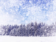 Winter wonderland stock photography