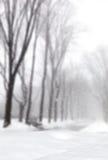 Winter wonderland background Royalty Free Stock Photo