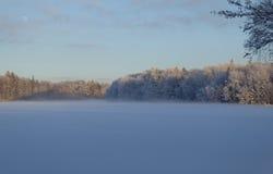 Winter wonderland. Winter beauty by Lagan in Sweden Stock Image