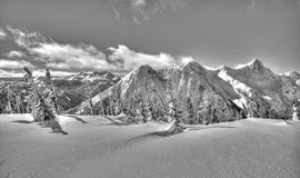 Winter Wonderland. Black and White: Winter Wonderland In Canadian Cascade Mountains, British Columbia stock photography