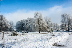 Winter Wonderland. Blue sky with white clouds and Snow Royalty Free Stock Images