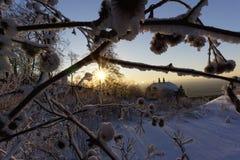 Winter wonderland. With bright sunshine royalty free stock image