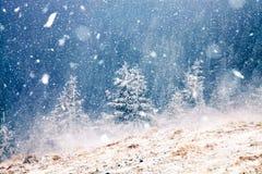 Winter wonderland - Christmas background with snowy fir trees in. Winter wonderland Christmas background with snowy fir trees in the mountains royalty free stock photo