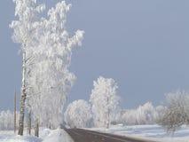 Winter wonderland. Royalty Free Stock Photography