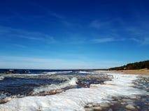 Winter wonderland country sea trees stock photo