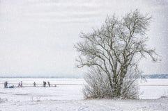 Winter Wonderland Frozen Lake Royalty Free Stock Image