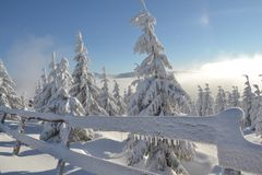 Winter wonderland in the Giant Mountains. With many snow and blue sky royalty free stock images