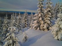 Winter wonderland in Hedmark county Norway. Christmas snow and beautiful winterlandscape stock images