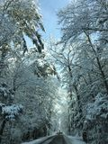 Winter wonderland. Ice and snow covering road and branches Stock Images