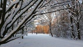 Winter wonderland in Munich in Germany Royalty Free Stock Photos