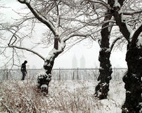 Winter Wonderland, New York City Royalty Free Stock Photos