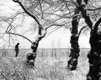 Winter Wonderland, New York City USA. Snow Storm, Central Park, New York City, Jackie Kennedy Onasis resevoir,Jan 2011 royalty free stock photo