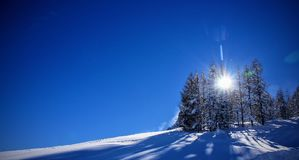 Winter wonderland panorama. Winter landscape with snow field and lot of blue skies, some snowcapped trees in the corner, shot against the sun Royalty Free Stock Photos