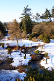Winter wonderland river bridge. Trees snow covered plains in the hilltop garden of Queen Elizabeth park Vancouver BC Royalty Free Stock Photo