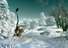 Winter Wonderland SCene, 3d CG Stock Photos