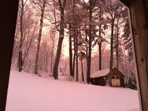 Winter wonderland. Snow scene during beautiful pink sunset Royalty Free Stock Image