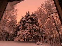 Winter wonderland. Snow scene during beautiful pink sunset Royalty Free Stock Photos