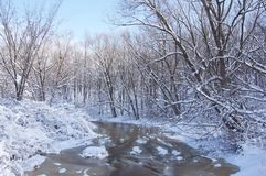 Winter Wonderland. Snow sticks to the trees after a late winter snowstorm Royalty Free Stock Photo