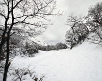 Winter Wonderland, Snowy Trail. Snowy path up a mountain in Ushuaia, Argentina. Cool toned ocation is beautiful and generic enough to look like any snowy royalty free stock photo